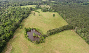 30+ Acre Hay Farm Near Chester, Texas Tyler County