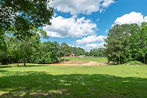 Beautiful East Texas Horse Property