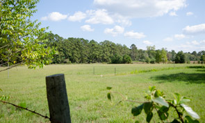 Perfect Farm House on 9+ Acres Pineywoods Hunting Horese Property